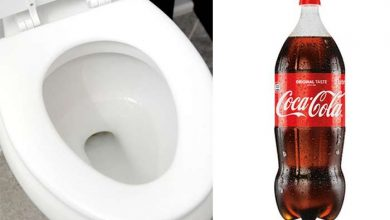 Photo of How to Clean Toilet Bowl with Coke