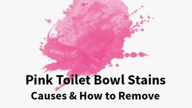 Photo of Pink Ring Stains in Toilet Bowl: Causes & How to Get Rid