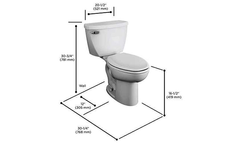 Standard height toilet features