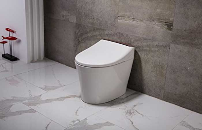 Picture of a tankless toilet