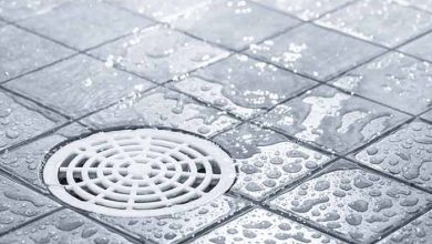 Photo of Shower Drain Smells Like Rotten Eggs: Causes & Fixes