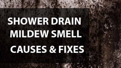 Photo of Shower Drain Smells Like Mildew: Causes & Fixes