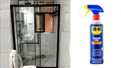 Photo of How to Clean Shower Doors with WD-40