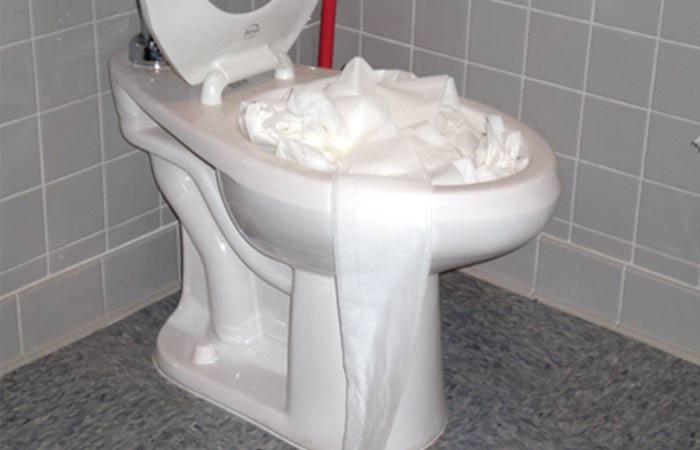 Tissue Clogged toilet