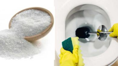 Photo of How to Unclog a Toilet with Salt