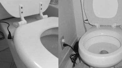 Photo of How to make a Heated Toilet Seat + Warmers DIY Ideas