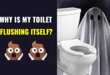 Photo of Toilet Flushing By Itself-Causes & Fixes