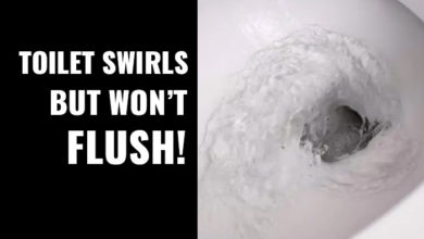 Photo of Toilet Swirls but Won't Flush – Causes & Fixes
