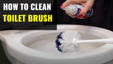 Photo of How to Clean a Toilet Brush & Holder