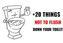 Photo of What NOT to Flush Down the Toilet